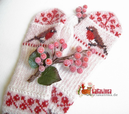Red berries and Robin mittens