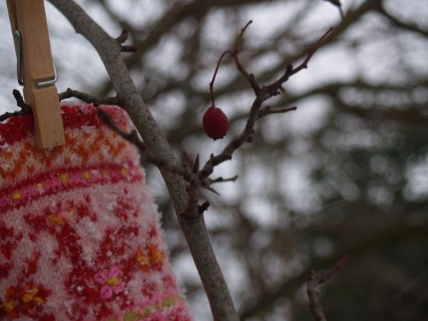 масляница в снегу